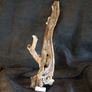 Mopane Wurzel - Skulptur, ca. 90 x 30 x 30 cm, 91540