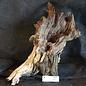 Mopane Wurzel - Skulptur, ca. 55 x 28 x 20 cm, 91557