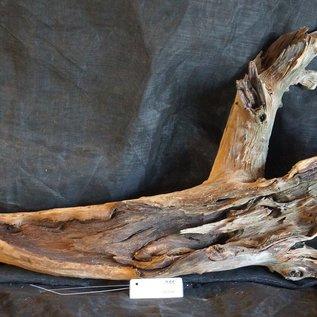 Mopane Wurzel - Skulptur, ca. 120 x 25 x 60 cm, 91558