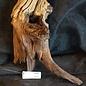Mopane Wurzel - Skulptur, ca. 90 x 40 x 40 cm, 91574