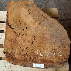 Madrona burl slab, approx. 800 x 660 x 40 mm, 12462