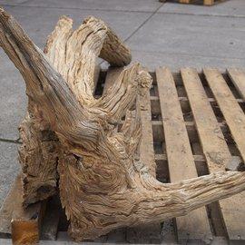 Mopane Wurzel - Skulptur, ca. 230 x 75 x 55 cm, 91590
