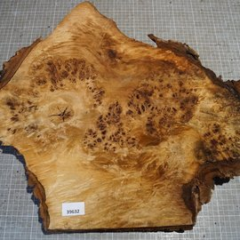Pappel Maser, ca. 530 x 485 x 50 mm, 3,7 kg