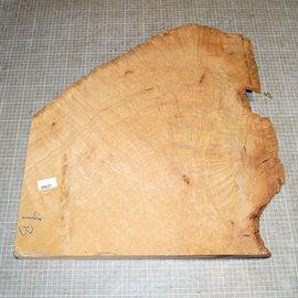 Madrona Maser, ca. 580 x 530 x 52 mm, 9,0 kg