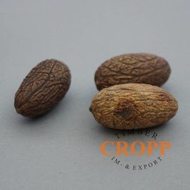 Uxi Nut Seeds/ 10 Pcs.