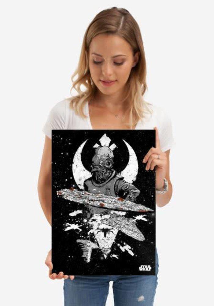 Rebel Fleet  | Star Wars Pilots