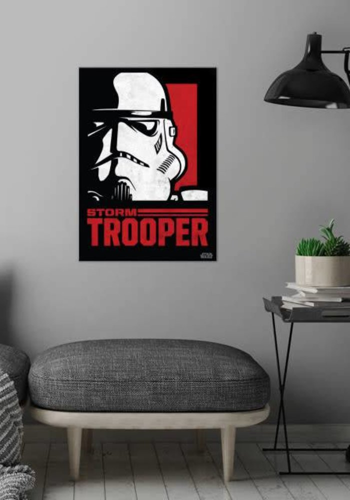 Stormtrooper  | Star Wars Icons Posters