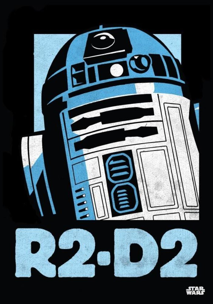 R2-D2  |  Star Wars Icons Posters