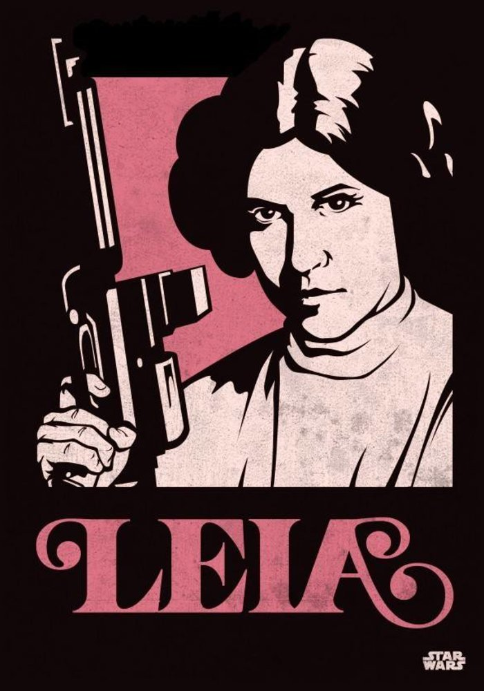 Princess Leia  | Star Wars Icons Posters