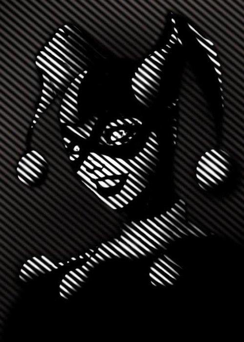 DC Comics Harley Quinn  |  Batman Noir