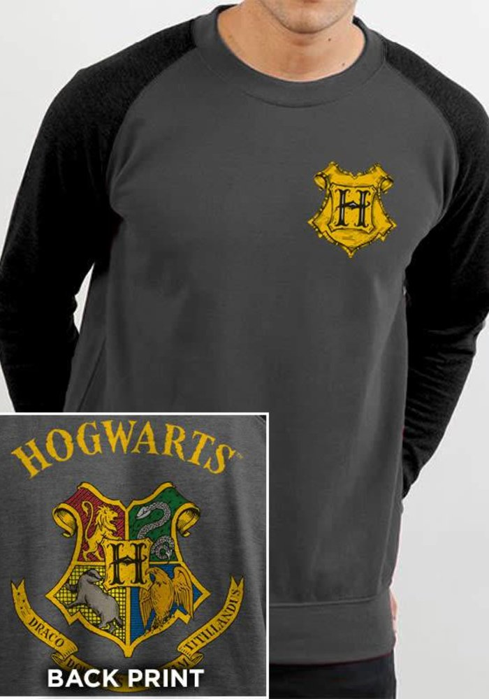 Hogwarts Color Crest | Harry Potter | Sweater Grey