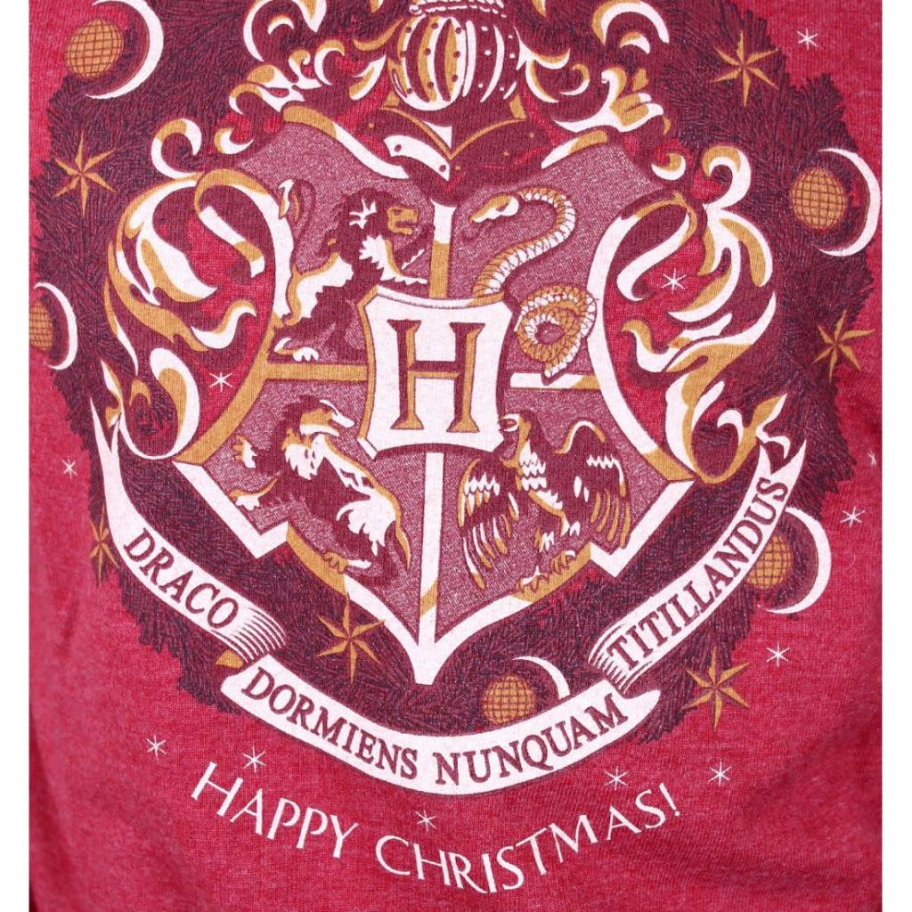 Harry Potter Happy Christmas | Harry Potter | Female Sweater Red