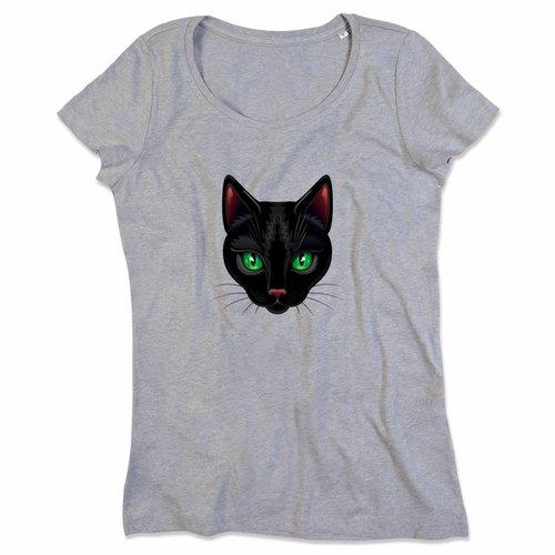 Black Cat1