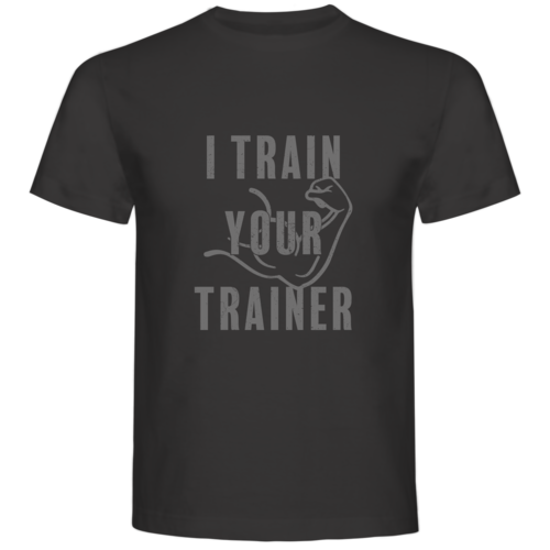I train you trainer grey