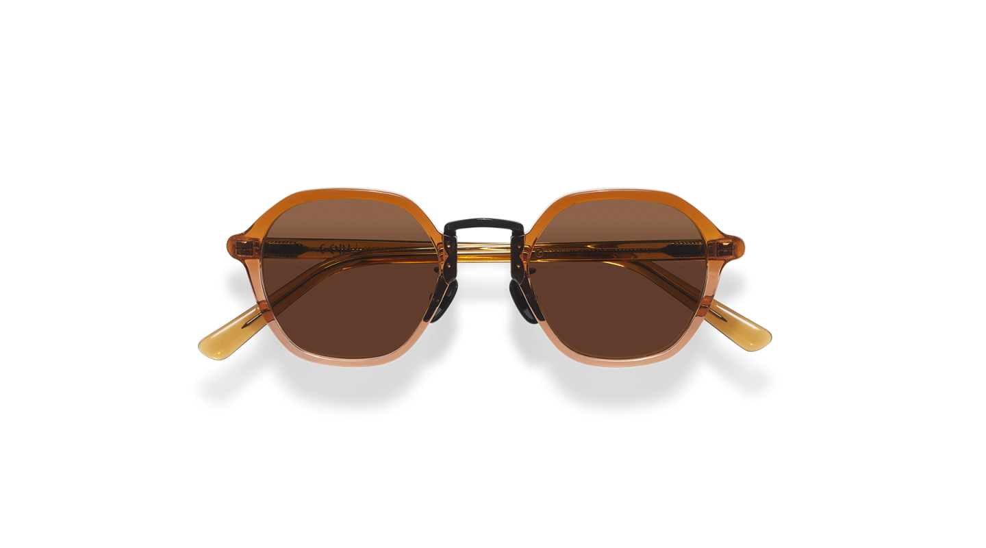 Mailey Brown Gradient Japanese Sunglasses-1