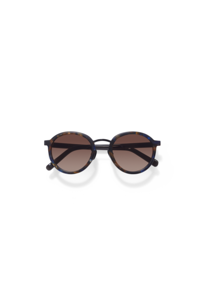 Loren Flame Brown Sunglasses
