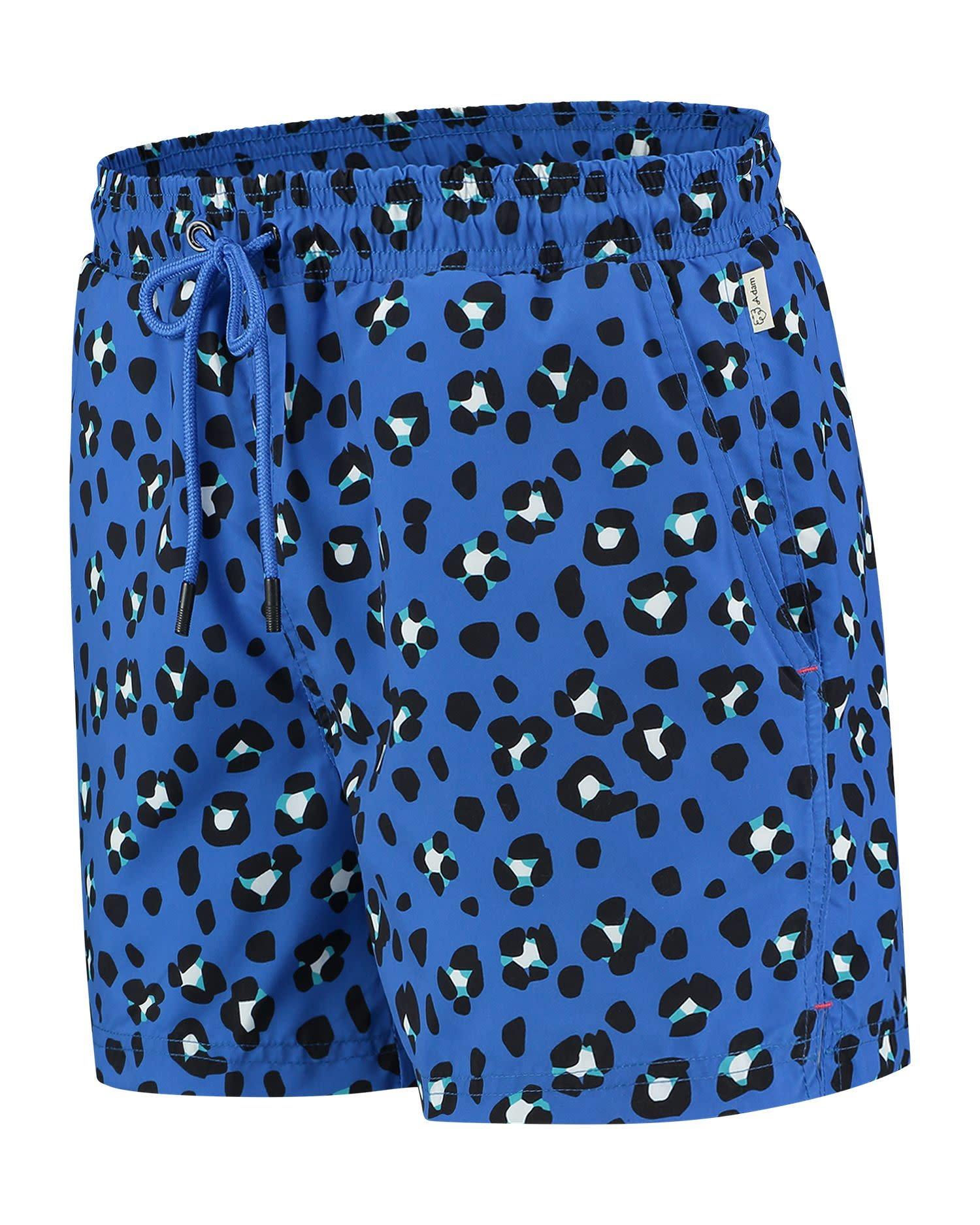 Jente Swimshort Blue-3