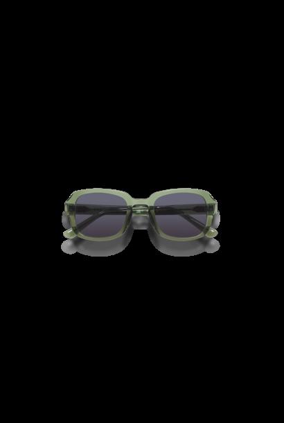 Desa Light Green Sunglasses M845