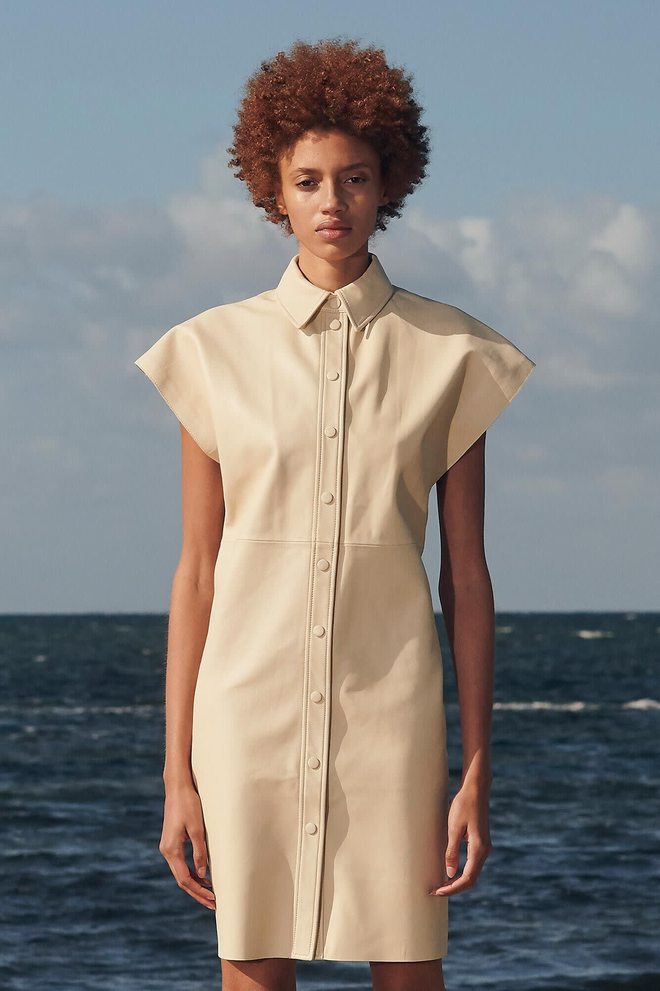Ariah Rice Brown Leather Dress-3