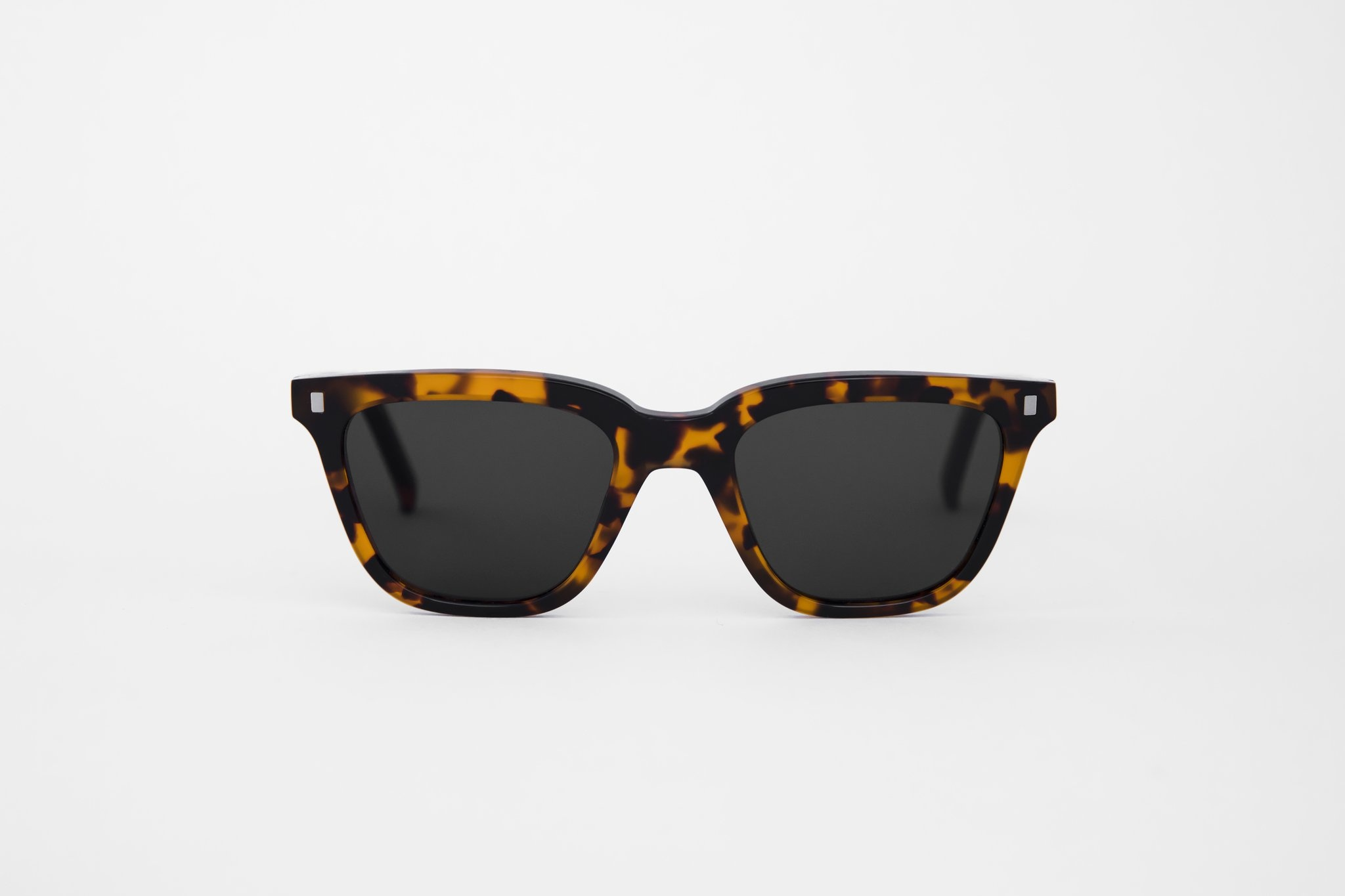 Robotnik Brown Havana Sunglasses-1