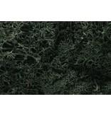 Woodland Scenics Ground Cover: Dark Green Lichen