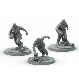 Modiphius Entertainment Wasteland Warfare - Super Mutants Suiciders
