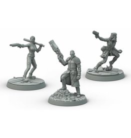 Modiphius Entertainment Wasteland Warfare - Survivors Boston Companions
