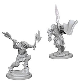 Wizkids Dragonborn Female Fighter (Wave 4)