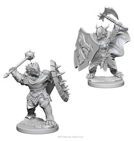 Wizkids Dragonborn Male Paladin (Wave 4)