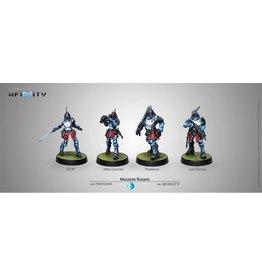 Corvus Belli Magister Knights