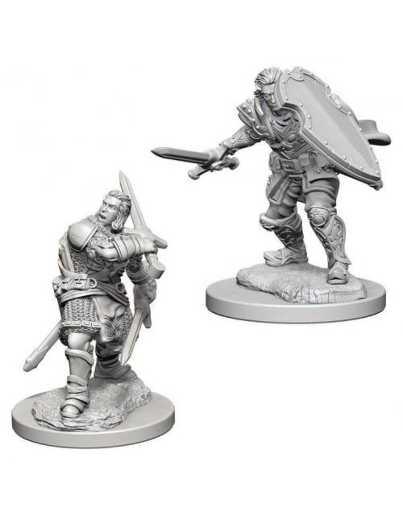 Wizkids Nolzur's Marvelous Miniatures: Human Male Paladin Blister Pack