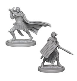 Wizkids Elf Male Paladin