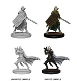 Wizkids Pathfinder Deep Cuts: Elf Male Paladin Blister Pack (Wave 2)