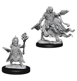Wizkids Evil Wizards