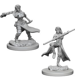 Wizkids Human Female Monk (Wave 1)