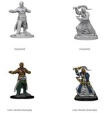 Wizkids Pathfinder Deep Cuts: Human Male Monk Blister Pack (Wave 1)