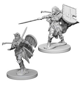 Wizkids Human Female Paladin (Wave 1)