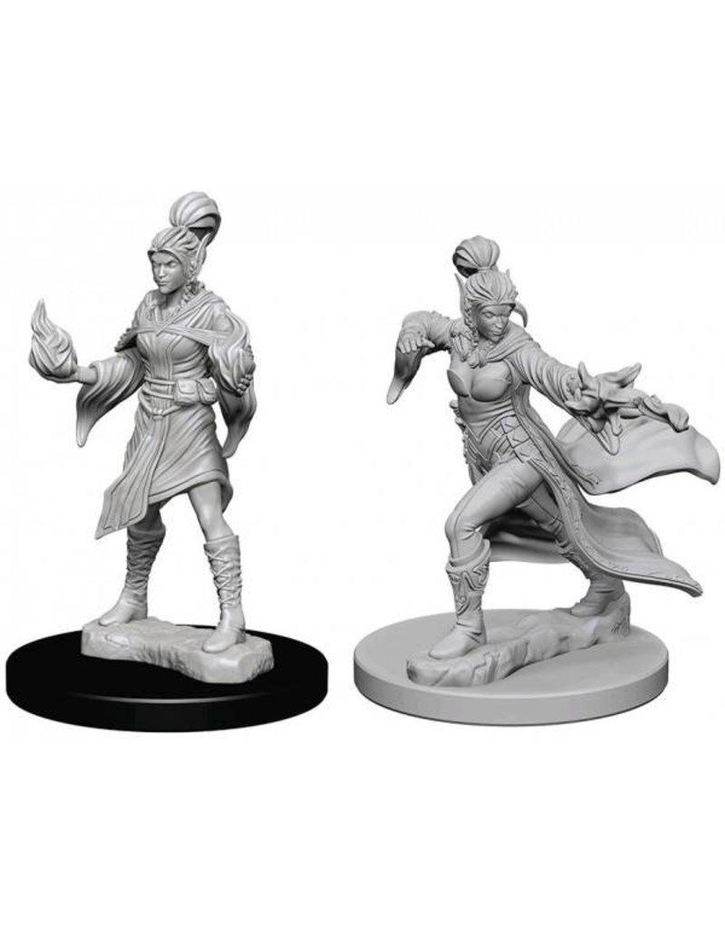 Wizkids Pathfinder Deep Cuts: Elf Female Sorcerer Blister Pack (Wave 1)