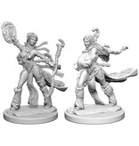 Wizkids Pathfinder Deep Cuts: Human Female Sorcerer Blister Pack (Wave 1)
