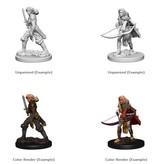 Wizkids Pathfinder Deep Cuts: Human Female Fighter Blister Pack (Wave 1)