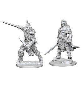 Wizkids Human Male Fighter