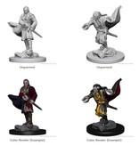Wizkids Nolzur's Marvelous Miniatures: Vampires Blister Pack (Wave 1)