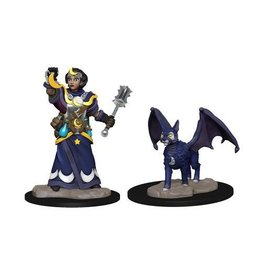 Wizkids Girl Cleric and Winged Cat (Wave 2)