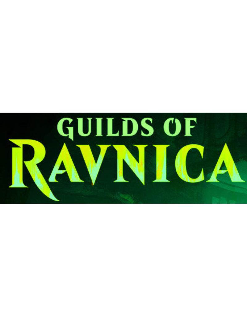 Wizards of the Coast Magic The Gathering: Guild Kit - Selesnya