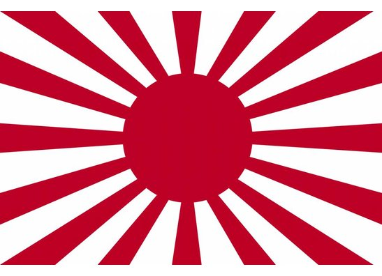 Japanese Forces