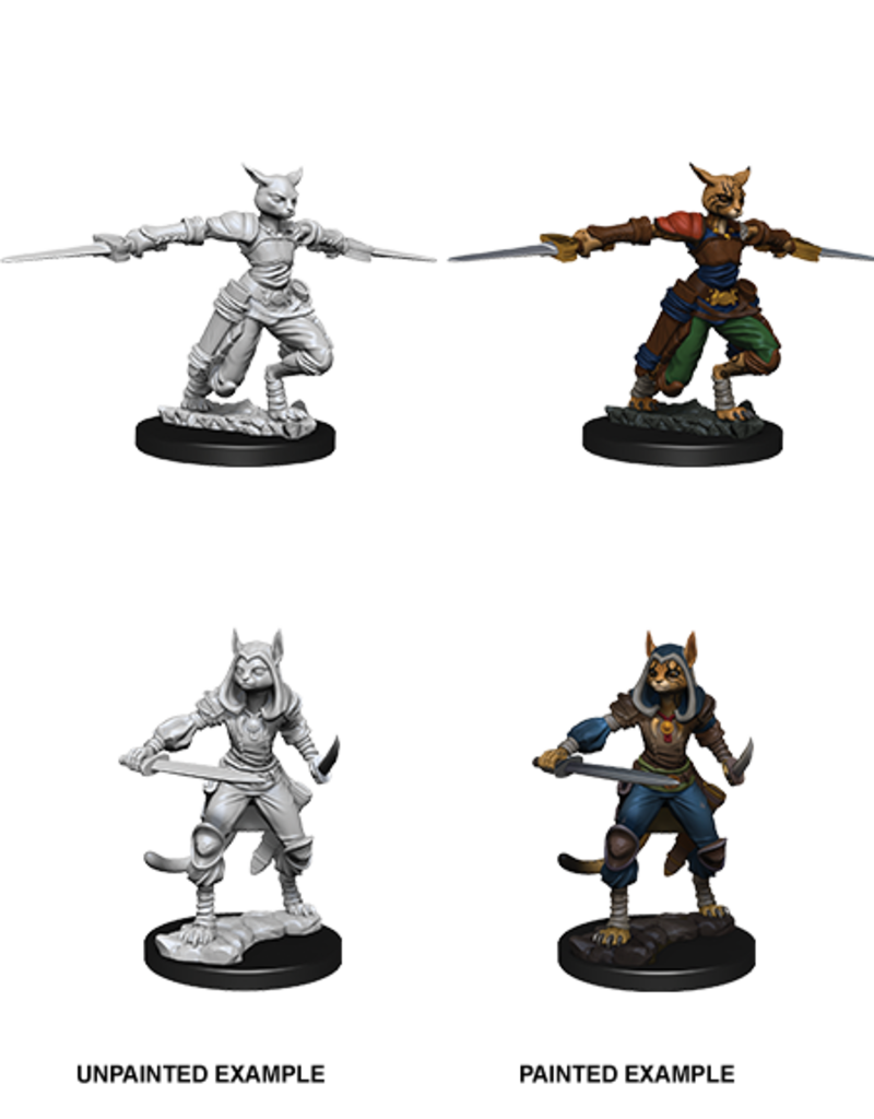 Nolzur's Marvelous Miniatures: Female Tabaxi Rogue (Wave 9)