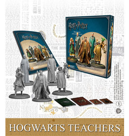 Knight Hogwarts Teachers