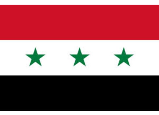 Iraq's Presidential Guard