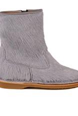 Eli 2224 potro gris