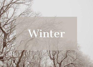 Winter 19-20